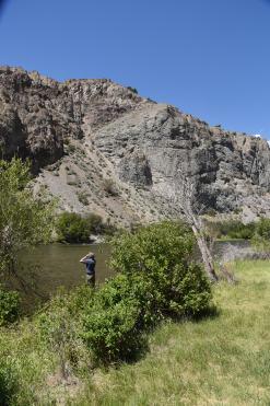 Jim Salmon River
