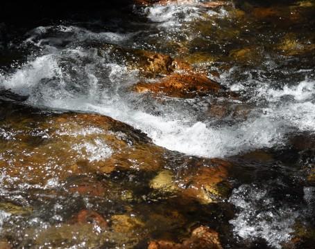 Parker Creek