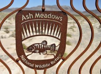 ash-meadows-sign