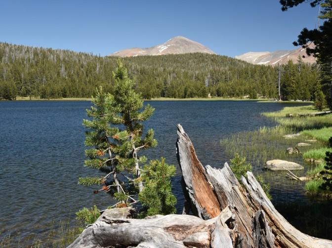 Dog Lake - view of mountains