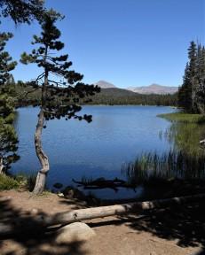 Dog Lake - west end