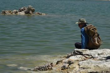 Jim looking for brine shrimp