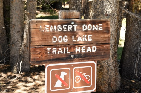 lembert-dome-dog-lake-trailhead