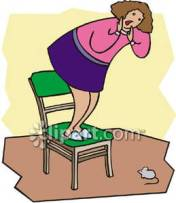 woman_frightened_by_a_mouse_stands_on_a_chair_royalty_free_080711-178462-570039