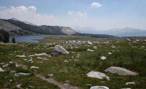 Boulder-strewn alpine meadow