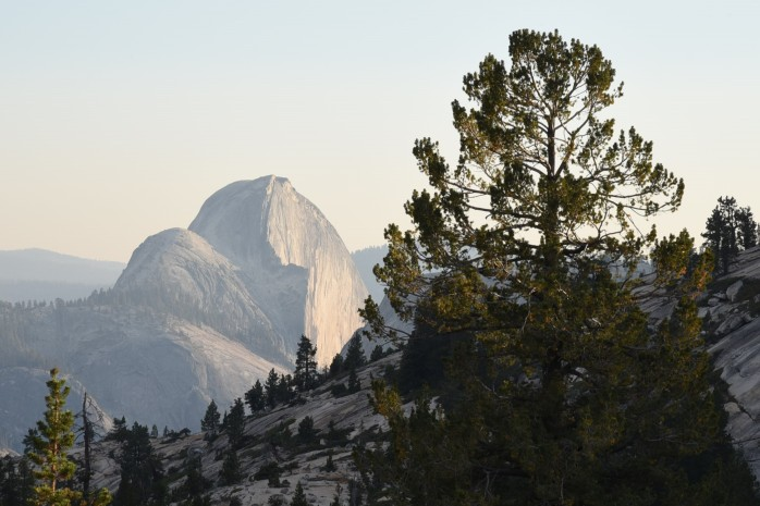 half-dome-from-olmstead-point-2