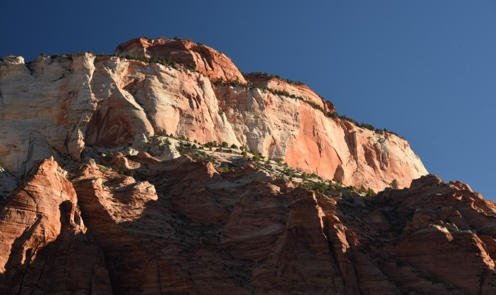 morning-light-in-zion