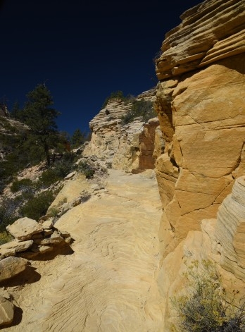 west-rim-trail-4