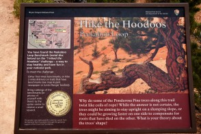 """One of the """"I hiked the Hoodoos"""" scavenger hunt markers"""