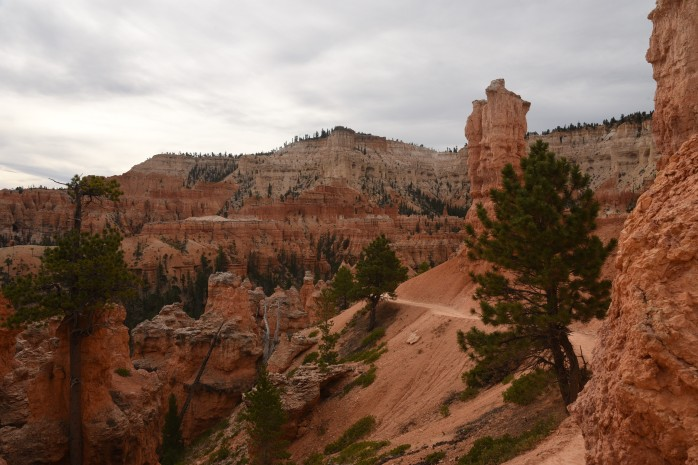 trail-at-bryce