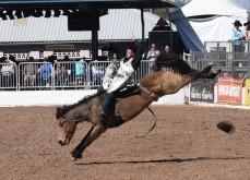 bronco-riding-3