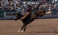 bronco-riding-5