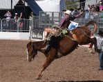 bronco-riding-6
