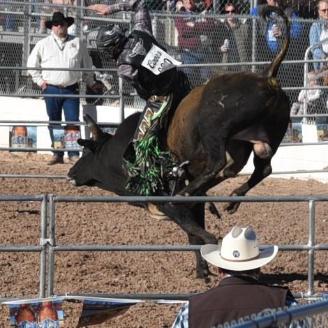 bull-riding-1