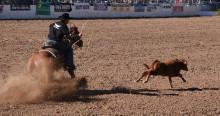 calf-roping-6
