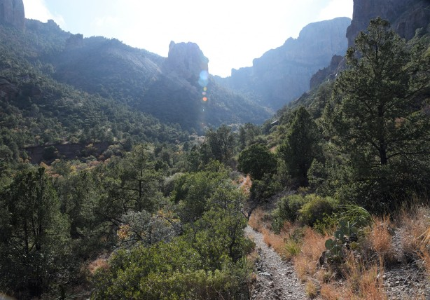 pine-canyon-2