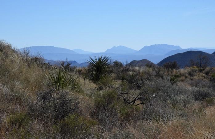 subtle-colors-juniper-canyon-trail