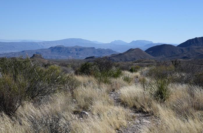 trail-winding-through-grasses
