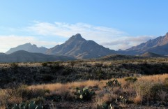 Chisos View