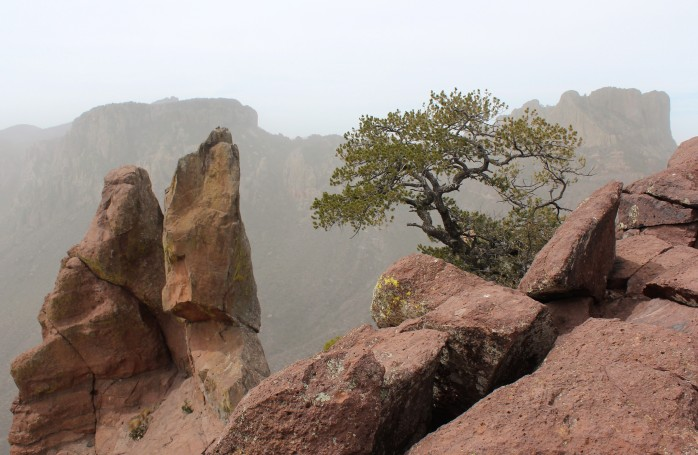Lost Mine Trail 2014