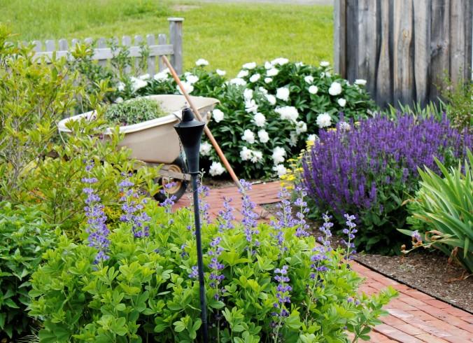 work-day-in-the-garden