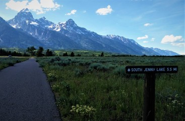 Heading back to Jenny Lake along the bike trail - can't beat that view!