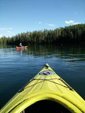 Calm waters along Jackson Lake shoreline