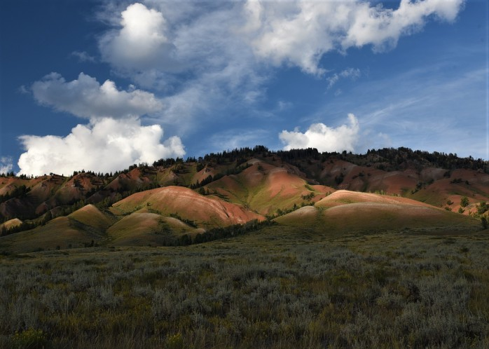 More Red Hills