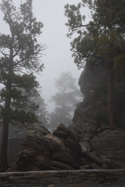 Example of the fog at Mount Rushmore - you literally would never know the mountain monument was even there!