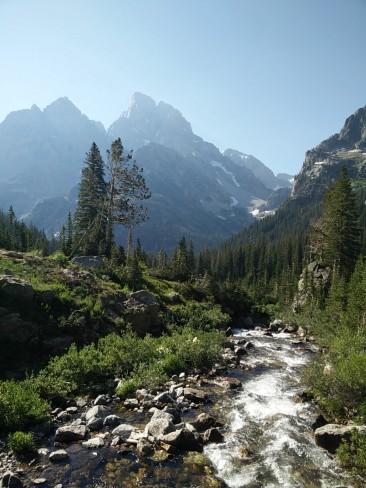 North fork of Cascade Canyon on the way to Lake Solitude