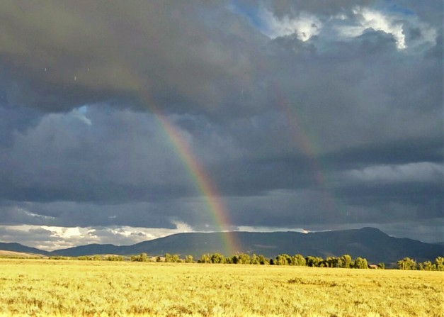 Rainbow over Antelope Flats