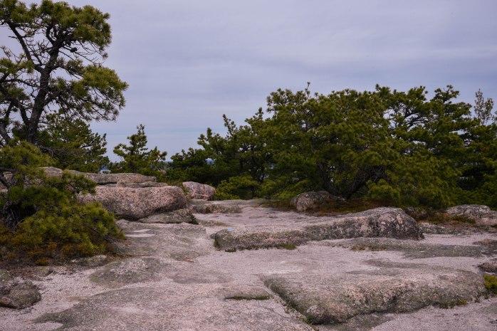 Gorham summit trail (1 of 1)