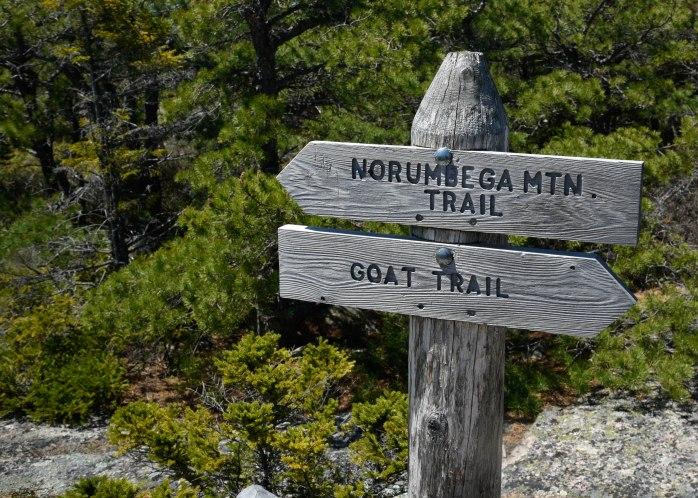 Norumbega trail sign (1 of 1)