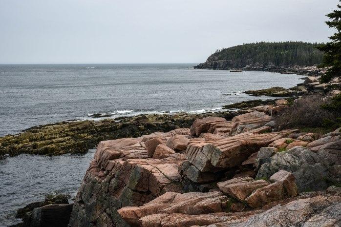 Ocean Path view (1 of 1)