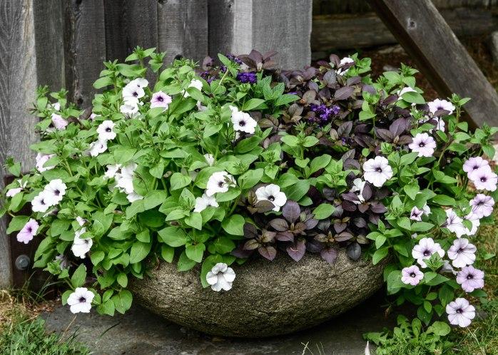 Garden planter (1 of 1)