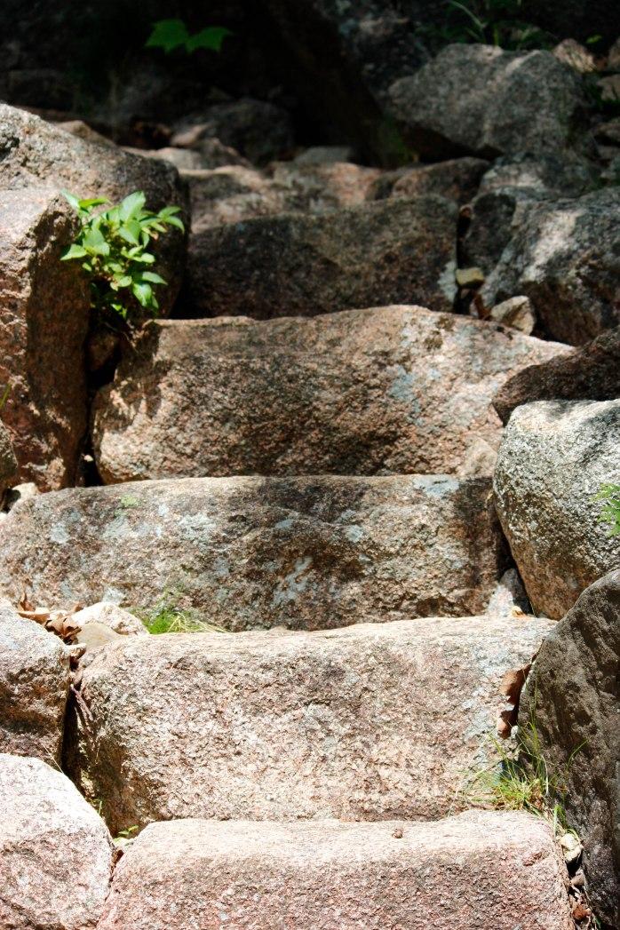 Deer Brook Steps (1 of 1)