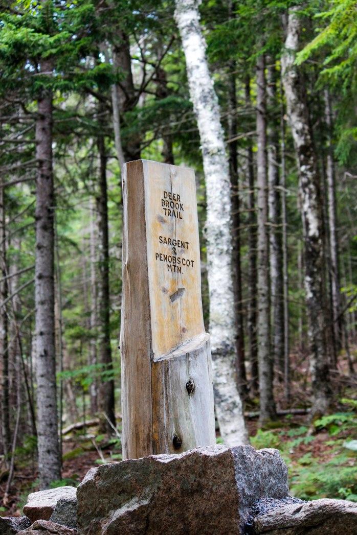 Deer Brook Trailhead (1 of 1)