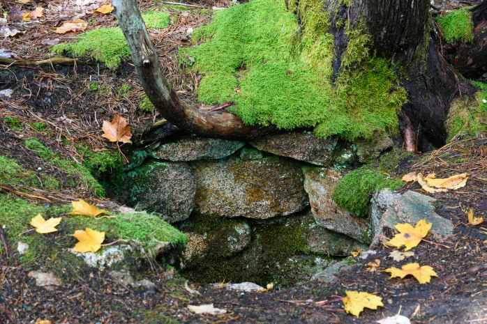 Old well along Quarry Trail (1 of 1)