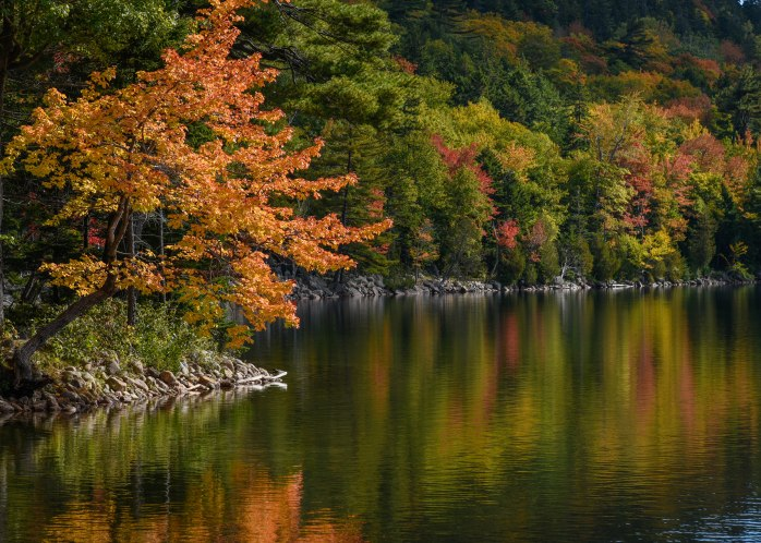 Jordan Pond foliage 2 (1 of 1)