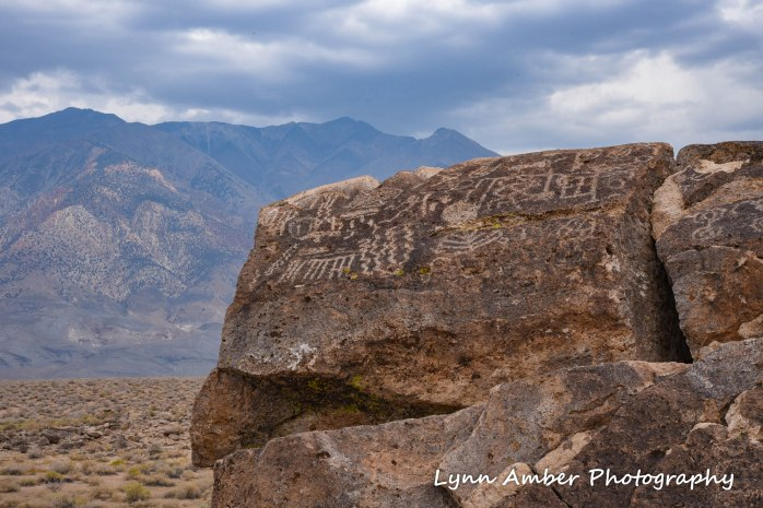 petroglyphs eastern sierras 2016 (1 of 1)