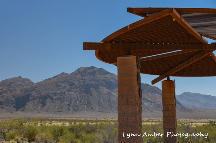 shade pavilion at ash meadows 2016 (1 of 1)