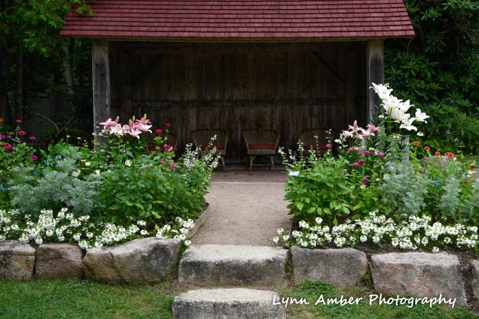 thuya garden mdi 2018 (6) (1 of 1)