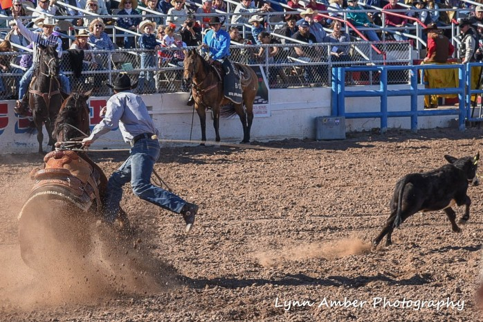 tucson rodeo 2 (1 of 1)
