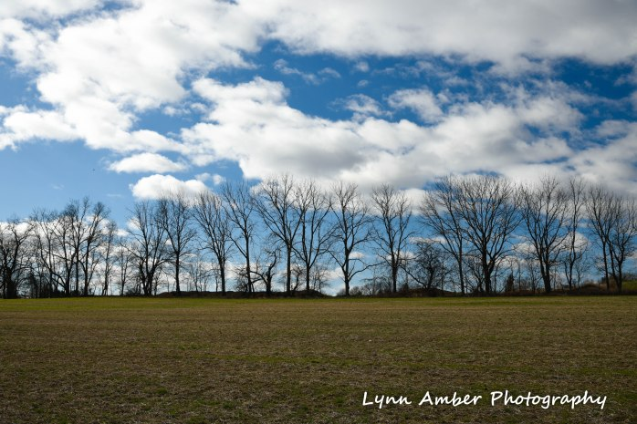 Farm field Lancaster County PA 2019 (1 of 1)