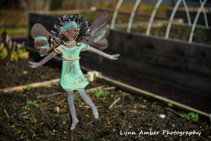 Willow Valley Community Garden Angel Lancaster PA 2019 (1 of 1)