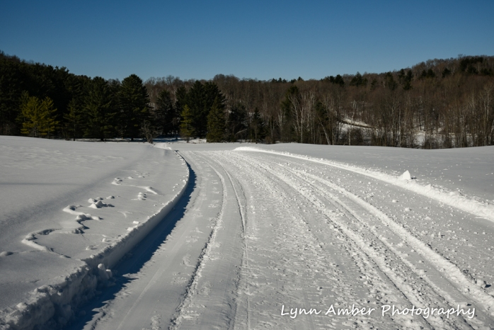 Dirt Road Walks 2 (1 of 3)