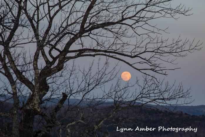 Moonrise (2 of 5)