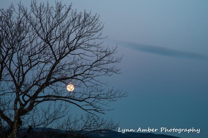 Moonrise (5 of 5)