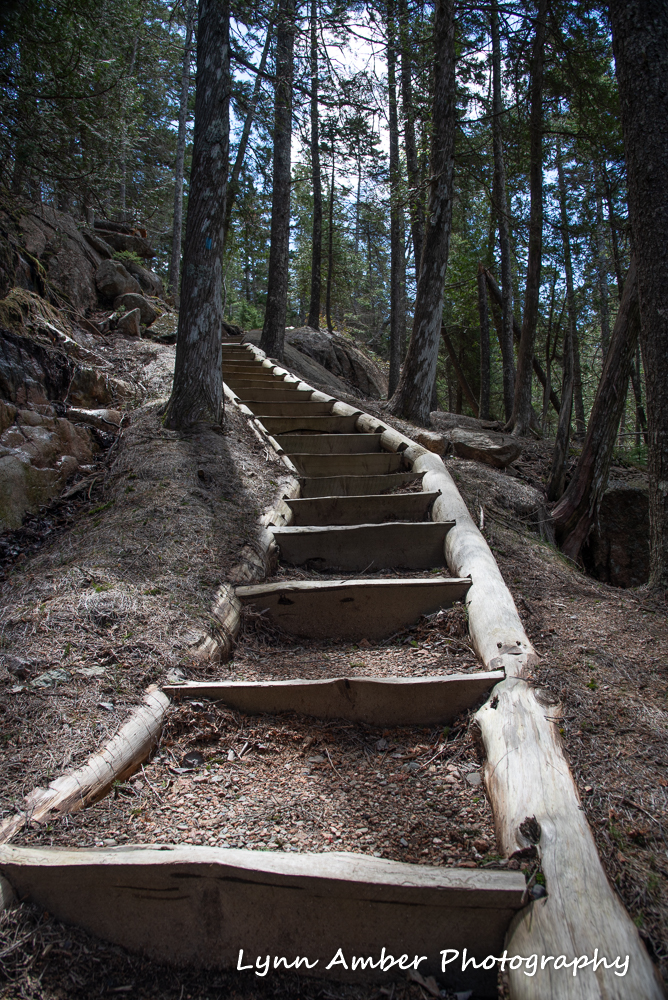 Hunter Brook Trail (1 of 1)