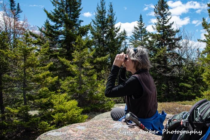 Lynn Triad Mt (1 of 1)